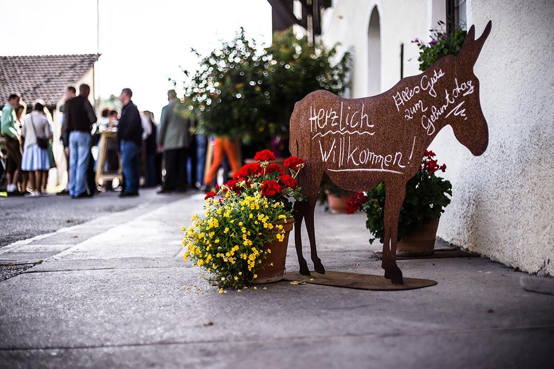 Pferd_Gesellschaft_MG_8258-6