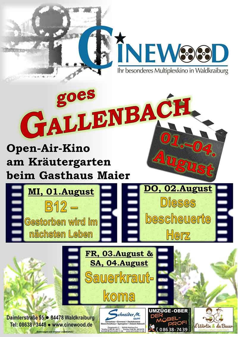 Cinewood-goes-Gallenbach-Plakat-800px-Breite
